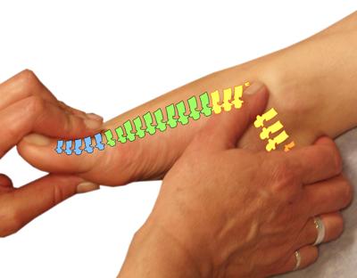 TCM Foot Reflexology Sorensensistem™